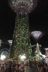 濱海灣花園 Christmas Wonderland 聖誕樹