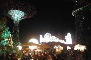濱海灣花園 Christmas Wonderland