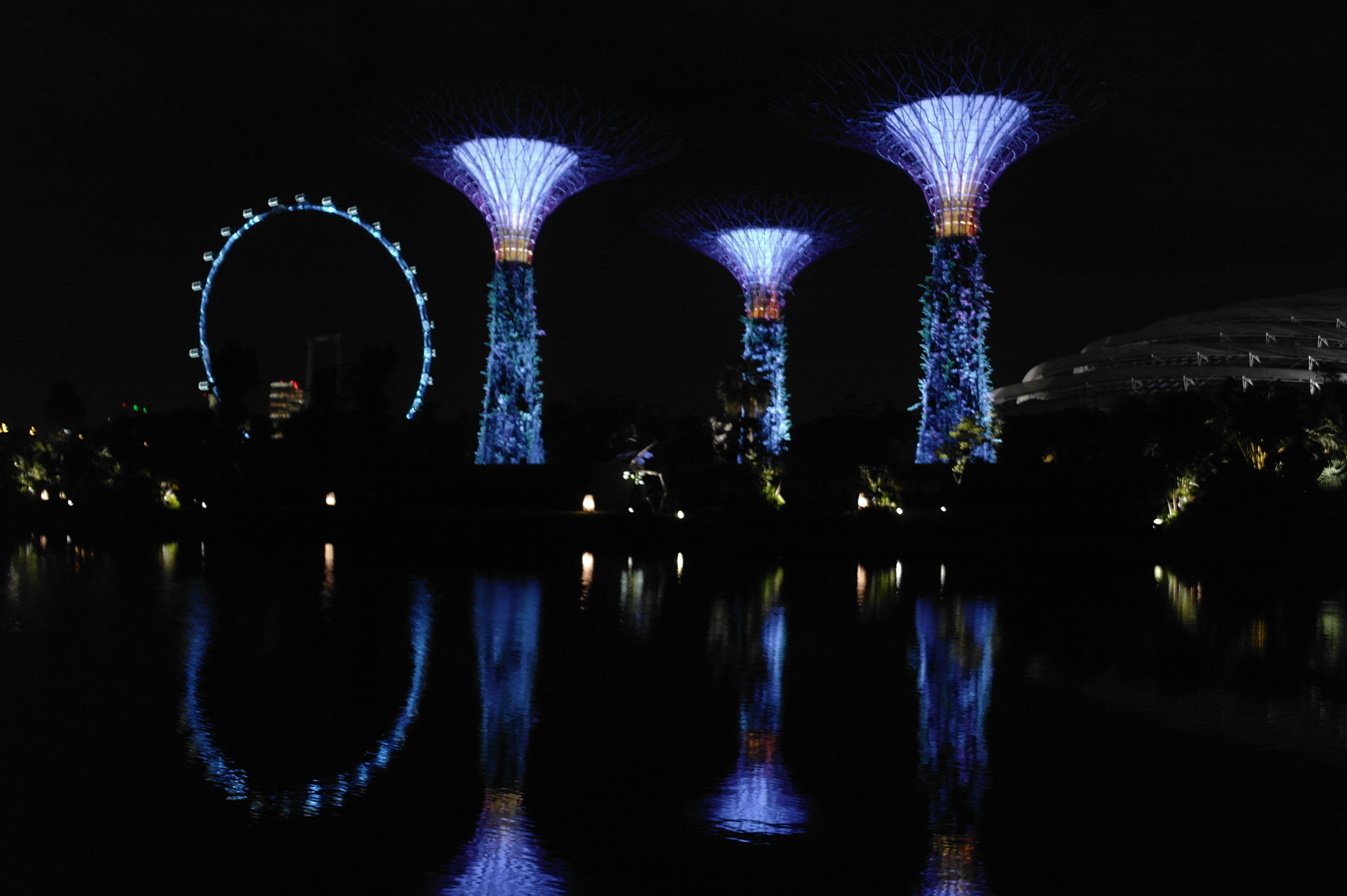 Gardens by the bay Singapore Flyer nightview