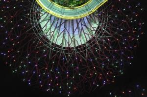 SuperTree 超級天空樹燈光秀