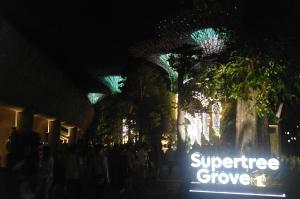 超級天空樹 Supertree Grove